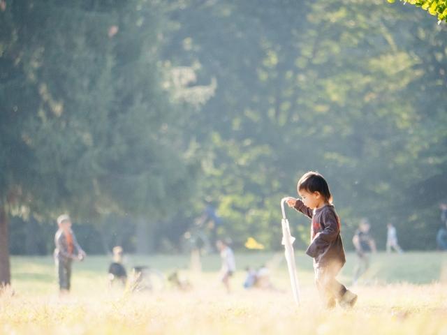 公園で一人の子供
